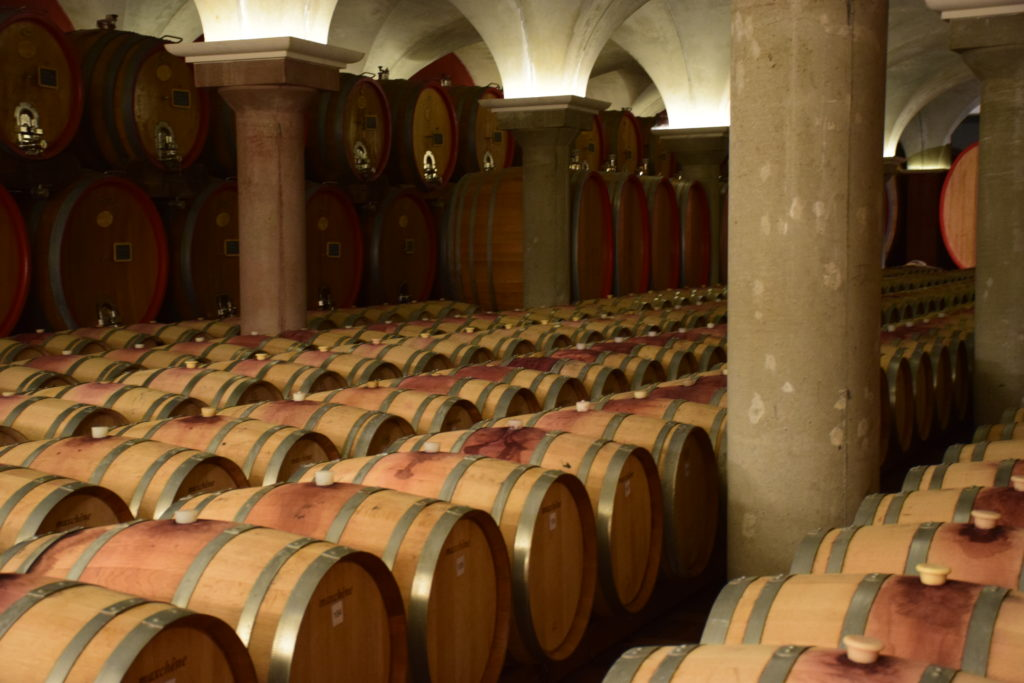 Museo del Vino Bardolino