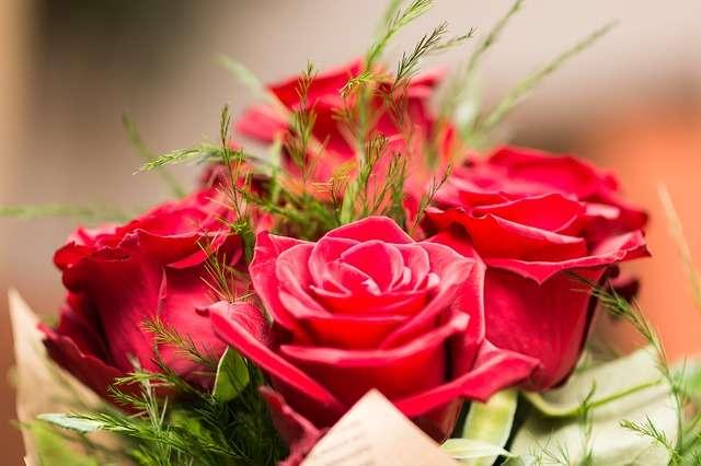 rose rosse amore