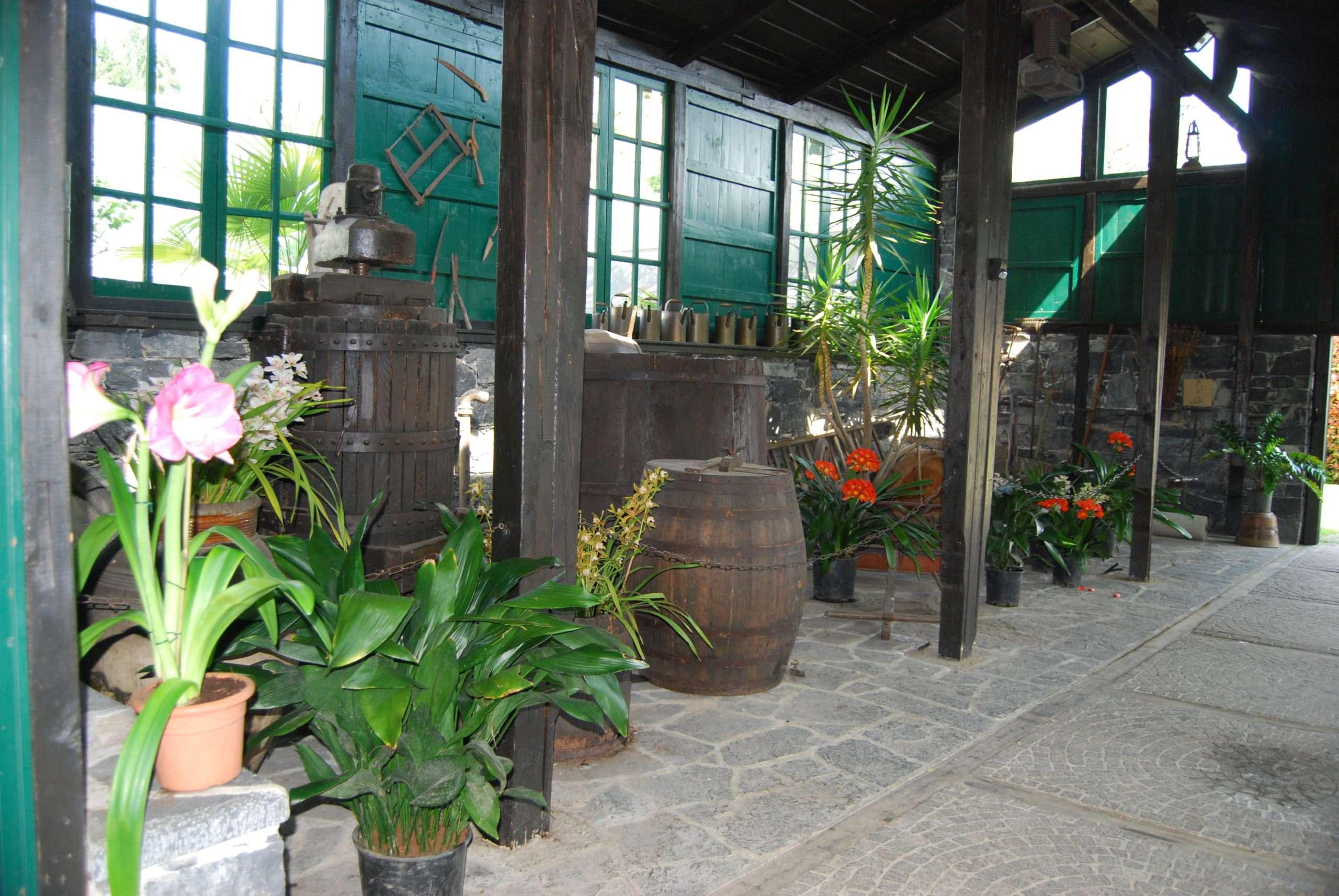 Villa Carlotta Museo